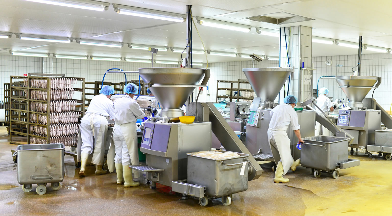 Schädlingsbekämpfung in der Lebensmittelindustrie